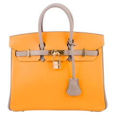 Hermes NEW Birkin 25 Yellow Gray Top Handle Satchel Tote Shoulder Bag in Box