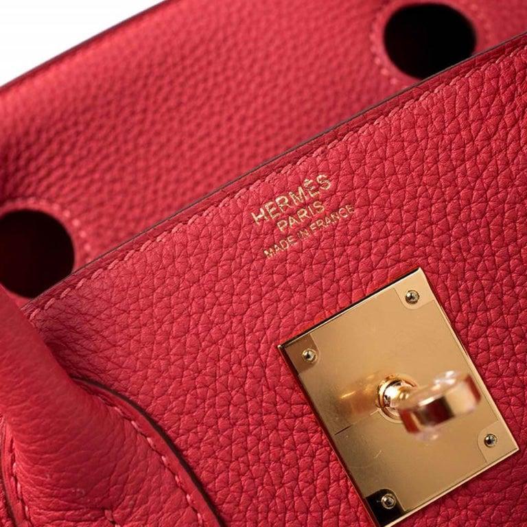 Hermes Rouge Pivoine Togo Leather Gold Hardware Birkin 30 Bag 1