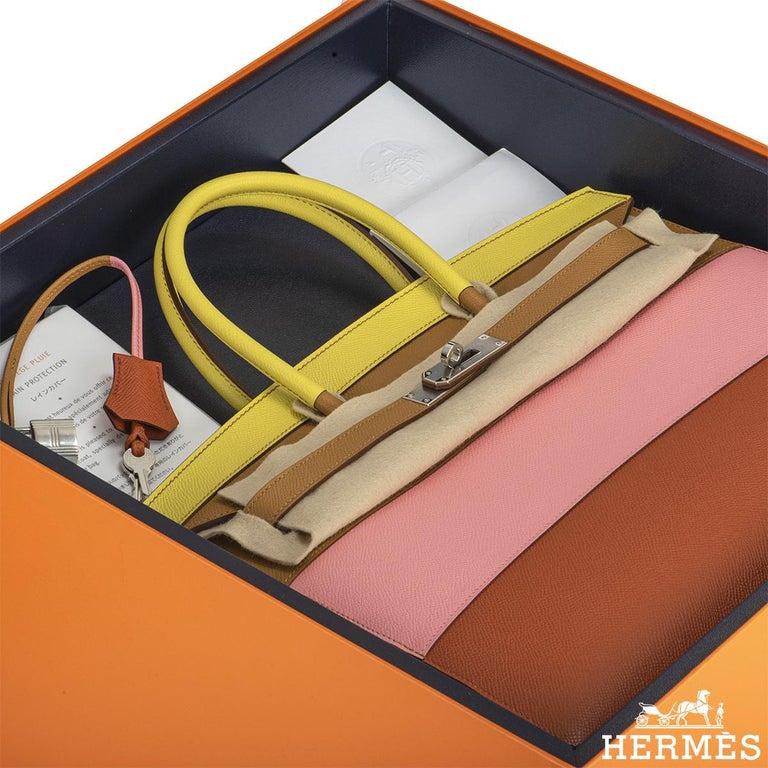 Hermès Sellier Birkin 35 Rainbow Sunrise Epsom PHW For Sale 5