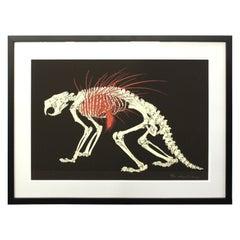 Hideo Takeda Japanese Porcupine Skeleton Silkscreen Print