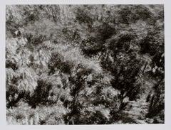 "Hideoki, Black & White Photography, Backyard, 1988, 16"" x 20"""