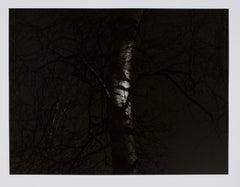 Hideoki, Black & White Photography, Backyard, USA, 1988