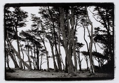 Silver Gelatin Black and White Photography
