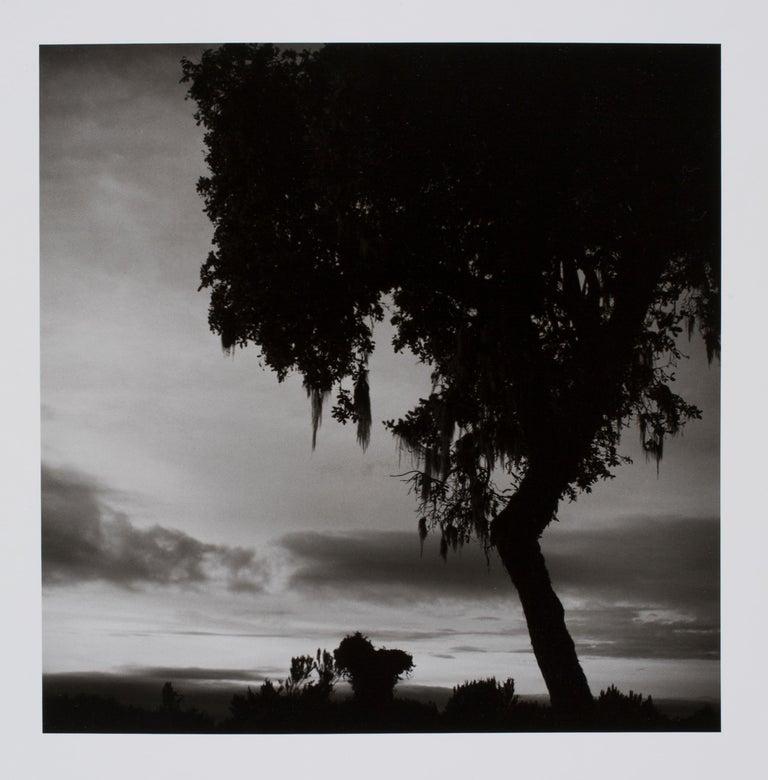 Hideoki Hagiwara Black and White Photograph - Hideoki, Black & White Photography, Untitled, Africa, 1994