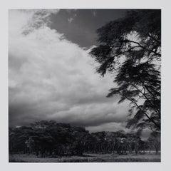 Hideoki, Black & White Photography, Landscape, Africa, 1994