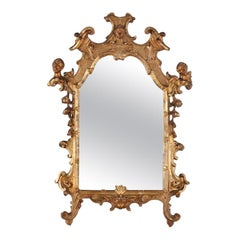 Highly Detailed Carved-and-Gilt Mirror