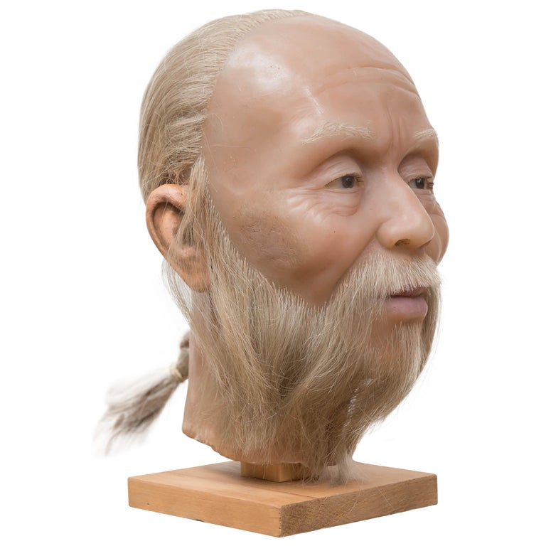 Highly Realistic Wax Head of a Chinese Man, Mid-20th Century For Sale