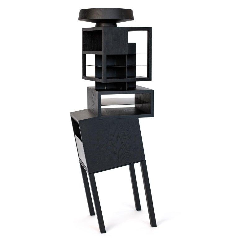 Hiro Contemporary Bookcase or Cabinet in Oak Wood 2