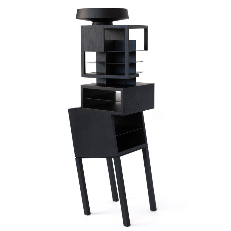 Hiro Contemporary Bookcase or Cabinet in Oak Wood 3