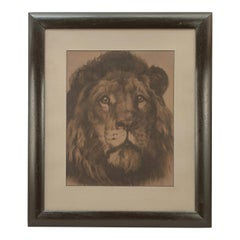 'His Majesty', Lion Portrait by Herbert Dicksee
