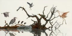 North Number Five, Great Blue Heron, Reddish Egret, Green Heron on Tree Branch