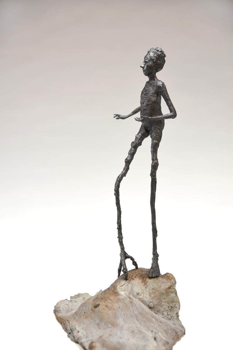Holly Wilson received her BFA from the Kansas City Art Institute in 1992 in Ceramic, an MA in Ceramics 1994 and an MFA in Sculpture 2001, both from Stephen F. Austin State University, Texas. Holly has exhibited her intimate bronze sculptures and her