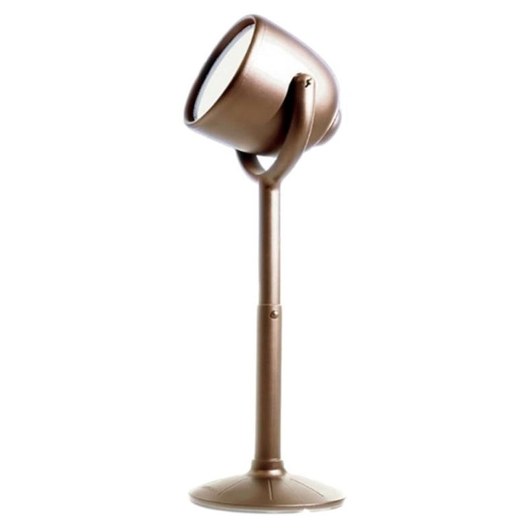 Hollywood Brown Outdoor Dimmable Floor Lamp by BrogliatoTraverso, Made in Italy For Sale