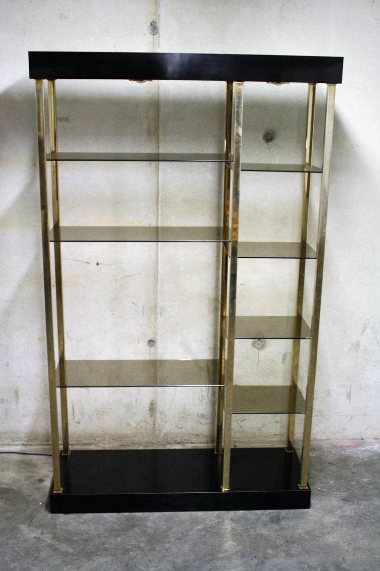 Hollywood Regency Wall Unit by Belgochrom, 1970s For Sale 2