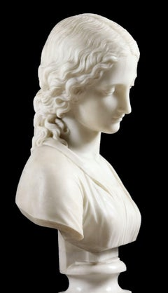 Marble Bust of a Beautiful Maiden