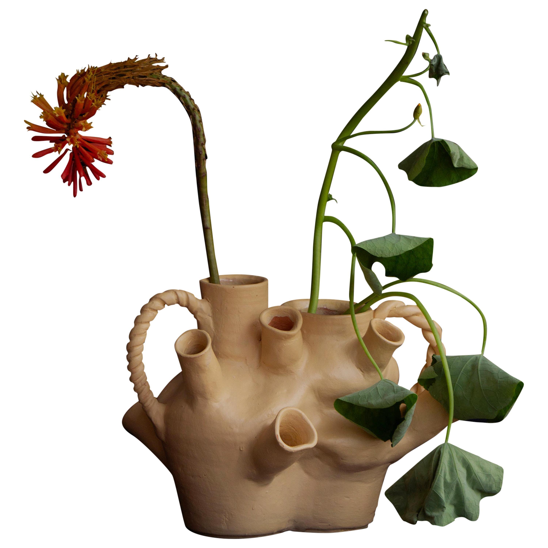 Homo Vase