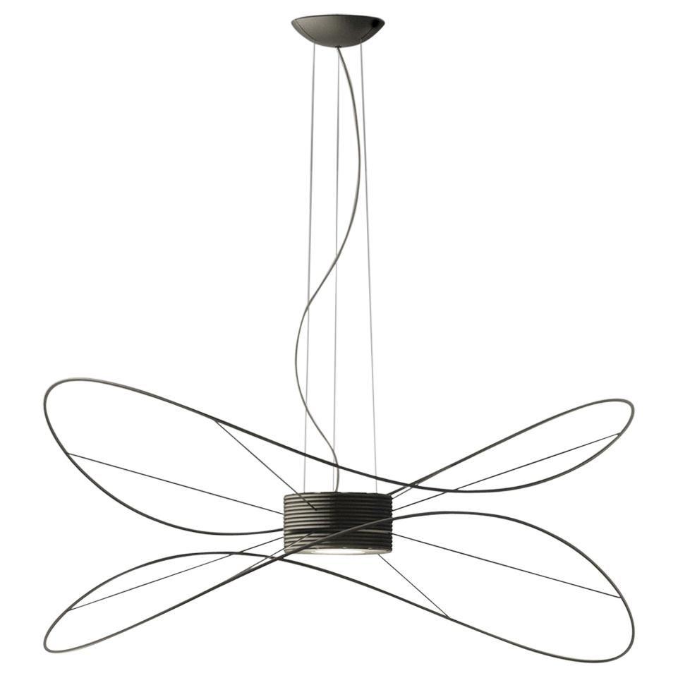 Hoops 2: Modern Italian Abstract LED Pendant Gold, Black or White