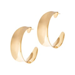 Hoops Miranda 24kt gold plated brass earrings NWOT