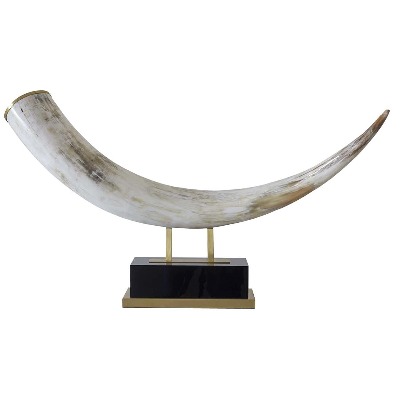 Horn Sculpture by Zanchi 1952