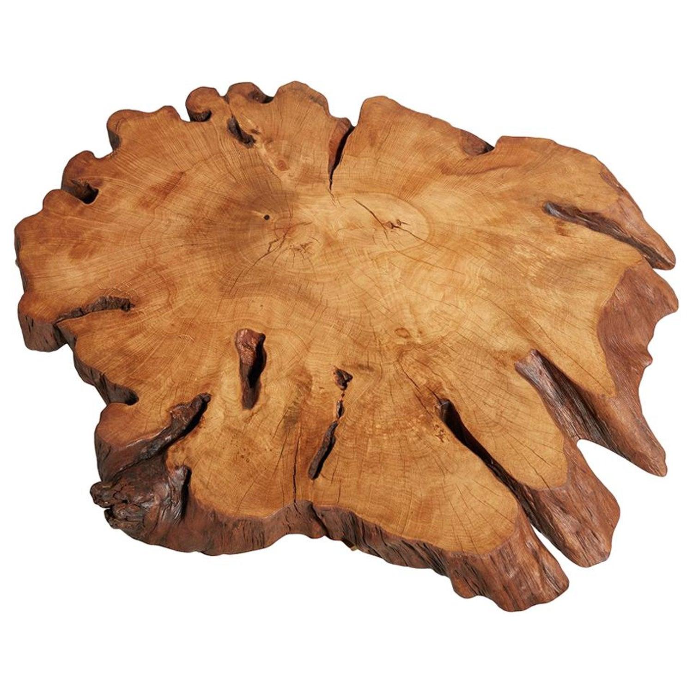 Hornbeam Tree Live Edge Coffee Table Live Edge Table Rustic Edge