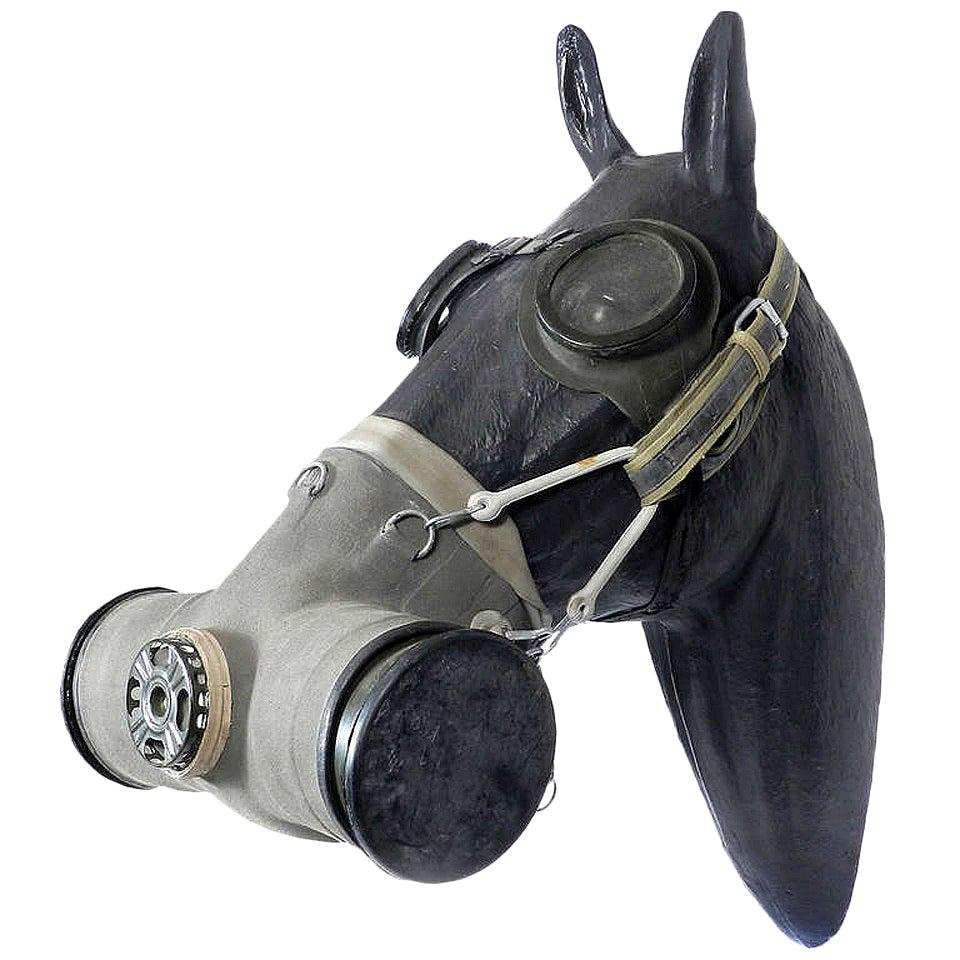 Horse Gas Mask, 1950s-1960s