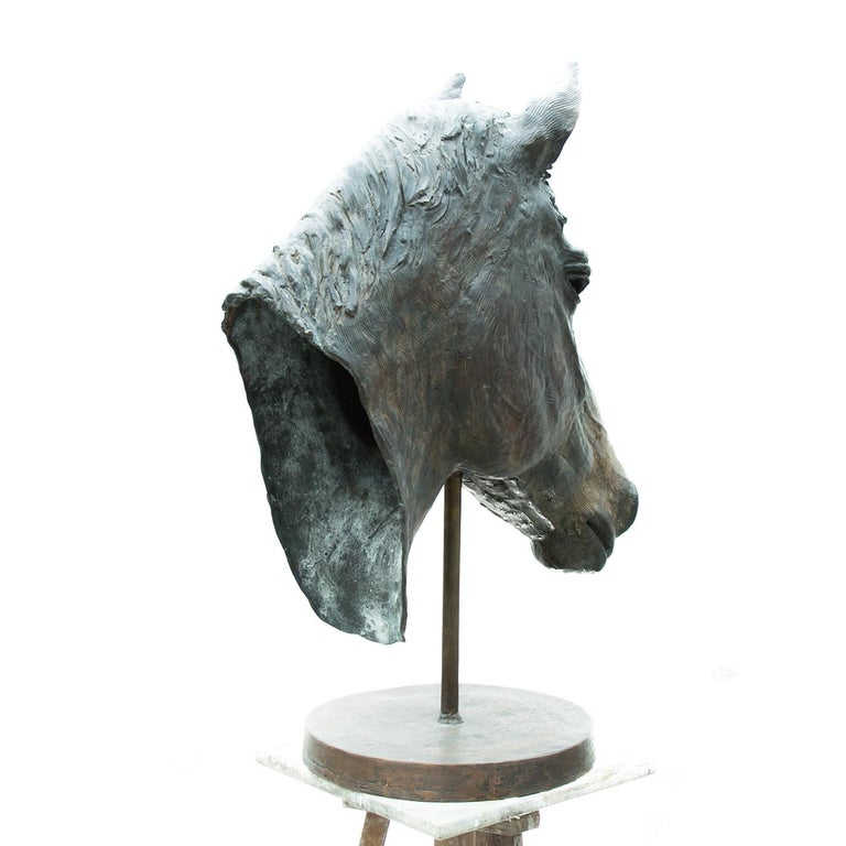 A stunning work of art that will infuse with sophistication both a traditional and a contemporary interior, this horse head sculpture is an original piece by Vincenzo Romanelli. It was sculpted from life in 2014 and portrays a Dutch warmblood