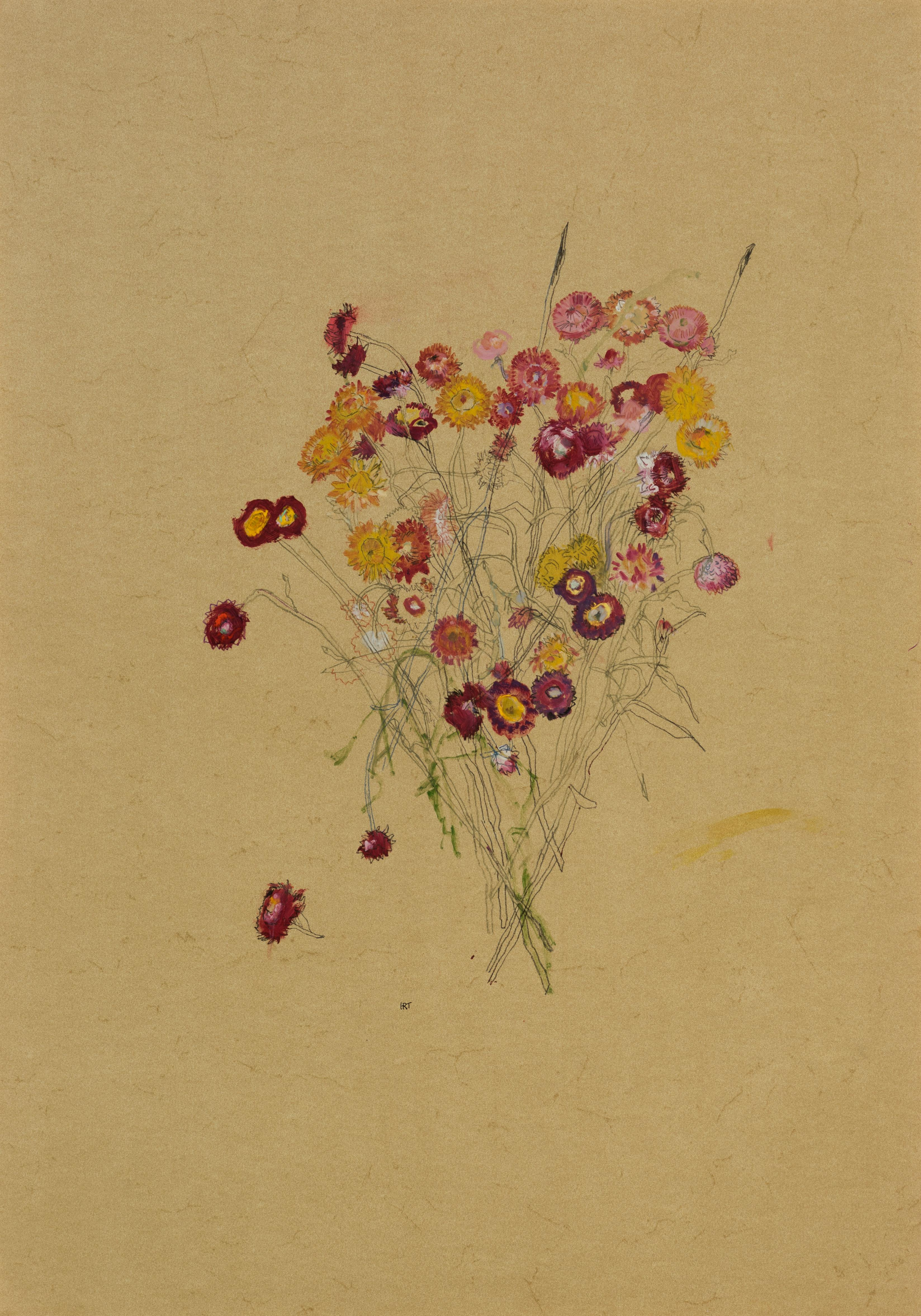 Flowers (Helichrysum), Mixed media on ochre parchment
