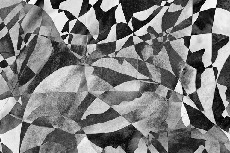 Feldforschung 07 - Black-and-White Landscape Photo Collage Edition Psychedelic - Photograph by Hubert Blanz