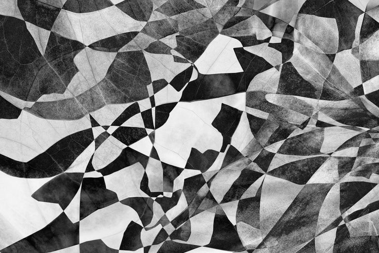 Feldforschung 07 - Black-and-White Landscape Photo Collage Edition Psychedelic - Contemporary Photograph by Hubert Blanz