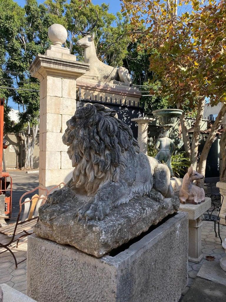Huge Hand Carved Stone Lion Sculpture Garden Center Piece Statue Antique For Sale 2