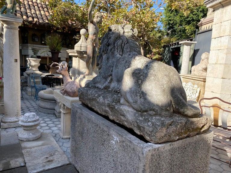 Huge Hand Carved Stone Lion Sculpture Garden Center Piece Statue Antique For Sale 5