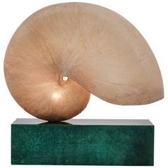 Huge Italian Mid-Century Modern Nautilus Shell Lamp by Aldo Tura