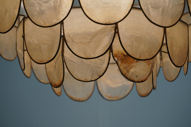 Hugh Nacre or Mother-of-Pearl and Brass Pendant Lamp, Italy, 1960 For Sale 8