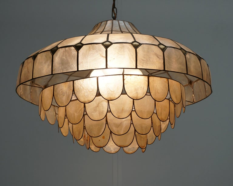 Hugh Nacre or Mother-of-Pearl and Brass Pendant Lamp, Italy, 1960 For Sale 2