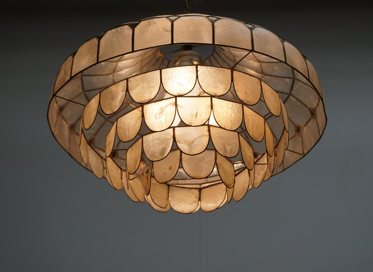 Hugh Nacre or Mother-of-Pearl and Brass Pendant Lamp, Italy, 1960 For Sale 3