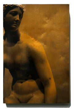 """""""Persephone"""" contemporary and elegant, mixed media photography on wood, hi-gloss"""