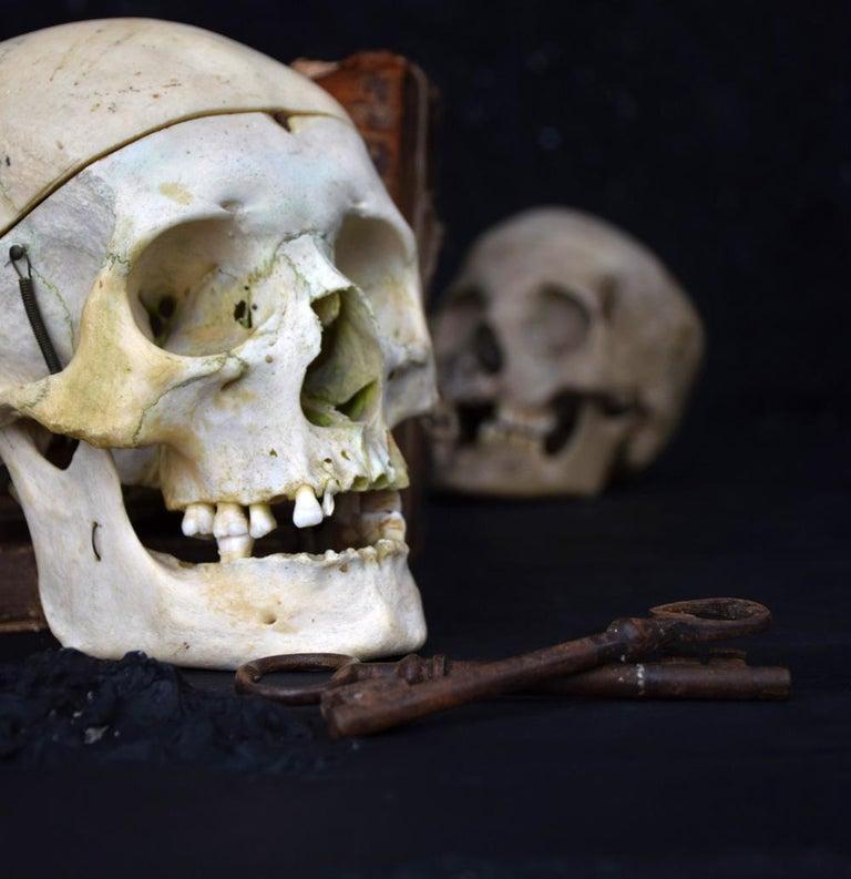 Folk Art Human Skull example 0.2 For Sale