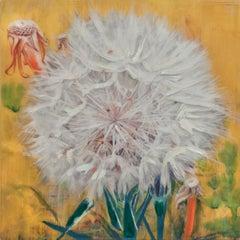 Yellow Dandelion II
