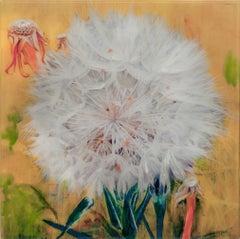 Dandelion - Yellow I