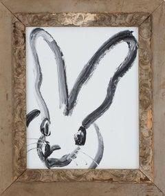 Bunny on White