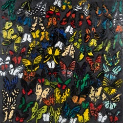 "Hunt Slonem ""Matagalpa"" Butterflies"