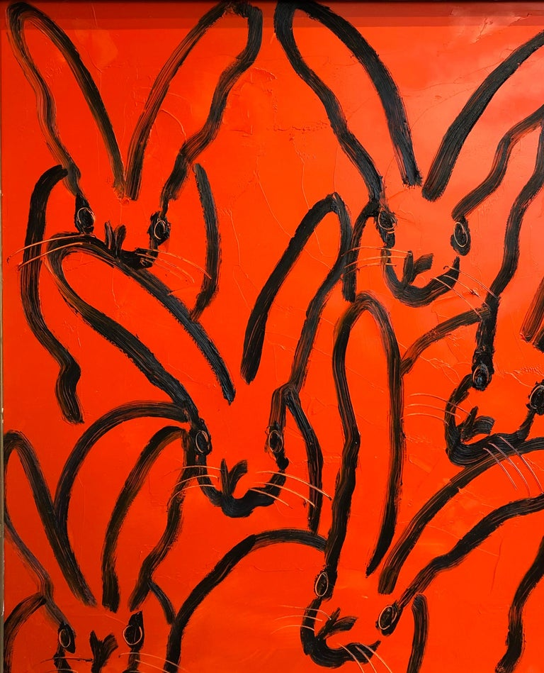 Red Rabbit For Sale 5