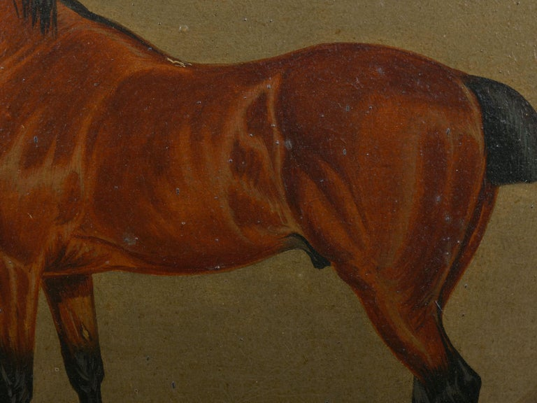 """""""Hunters in Stable"""" Antique English Oil Paintings of Horses, Set of 7 For Sale 5"""