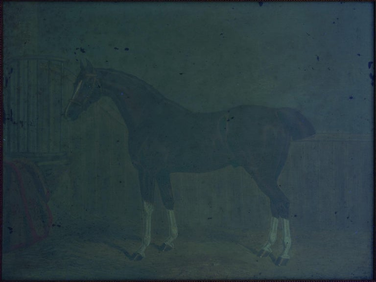 """""""Hunters in Stable"""" Antique English Oil Paintings of Horses, Set of 7 For Sale 12"""