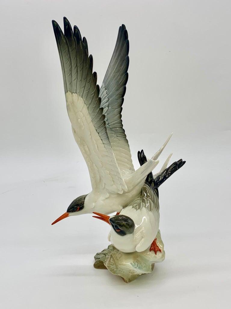 Hutschenreuther Porcelain Birds, 19th Century For Sale 5