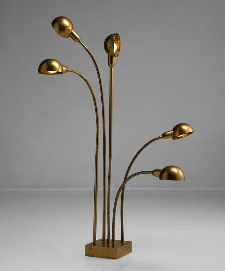 Hydra lamp by Pierre Folie.  France circa 1970  Works as a floor lamp or a table lamp, brass lamp with adjustable arms.