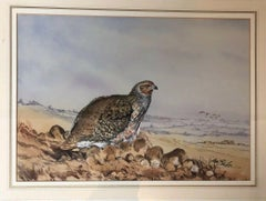 """Grouse in Scotland"" Fine Original Watercolour Painting by Ian Bowles"