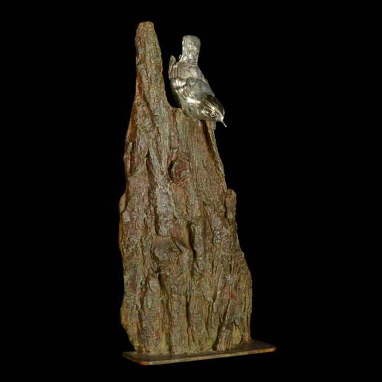 Ian Bowles Figurative Sculpture - A finely modelled sterling silver Nuthatch on a bronze bark