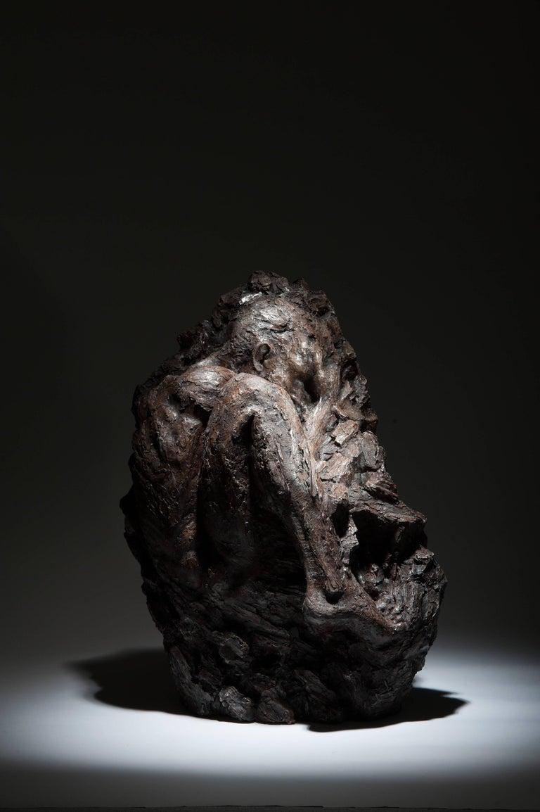 Ian Edwards - Within Unfolding - Original Signed Bronze Sculpure