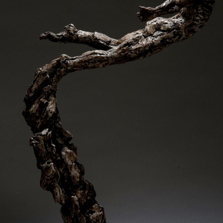 Ian Edwards - Born	within Fire - Original Signed Bronze Sculpure Dimensions: 155 x 80 x 50 cm  Edition of 12	  Edwards' practice expresses the power and determination of human endeavour. He draws inspiration from natural forces, with his powerful